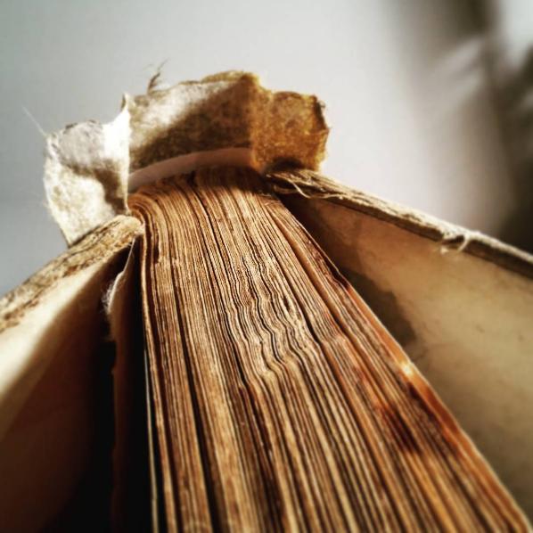 Photo: exlibris.lioness on Instagram